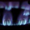 酒粕の栄養素は加熱すると壊れてしまうのは本当?